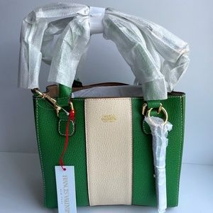 Frances Valentine Small Green & White Leather Tote
